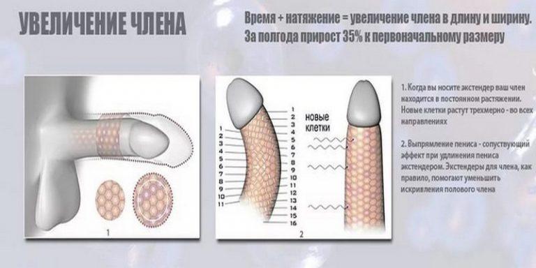 Как увеличить половой орган в домашней условии