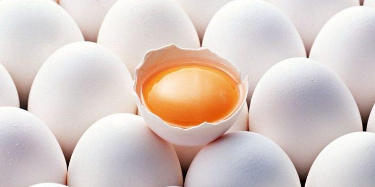 Потенция яицнетоп