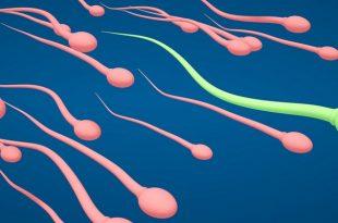 Сперма зелёного цвета