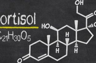 Кортизол, норма у мужчин