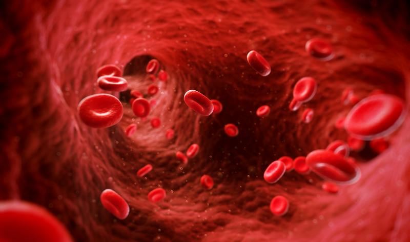 Ефективность препарата фенилпропионата