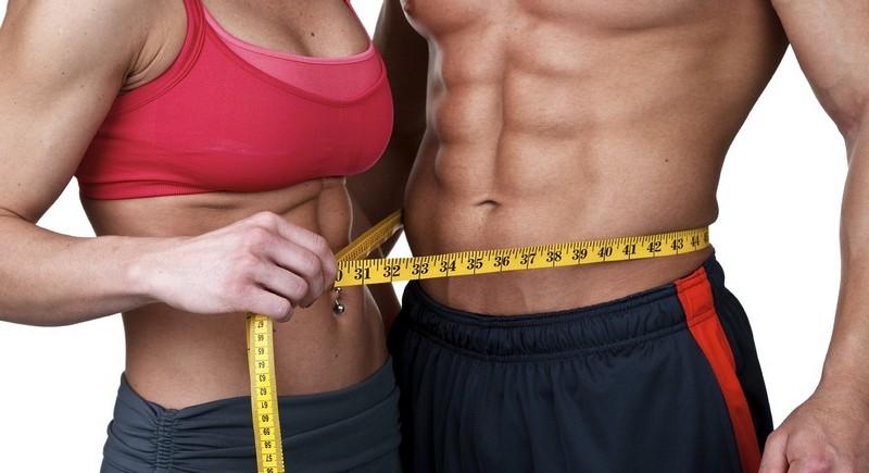 тестостерон и обмен веществ