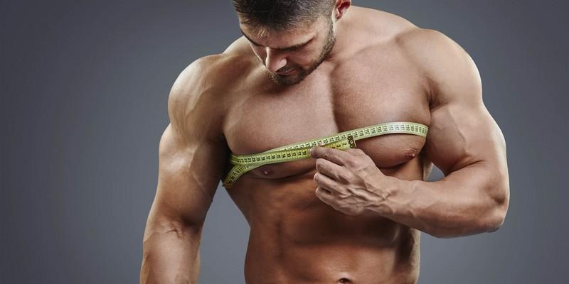 Как вырабатывается тестостерон?