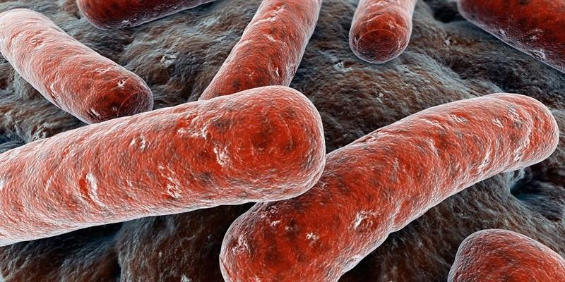 Анализ на гарднереллу, симптомы и профилактика гарднереллеза