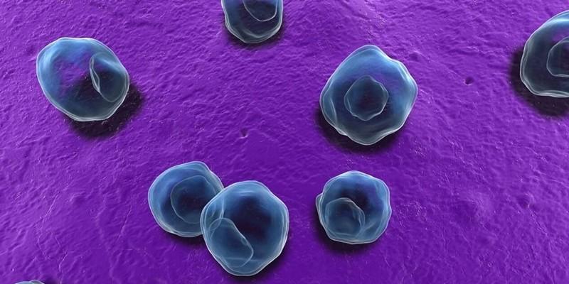 Хламидии трахоматис у мужчин