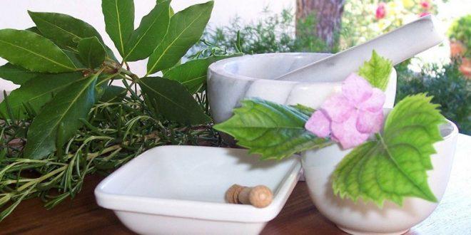 Природные препараты для повышения потенции
